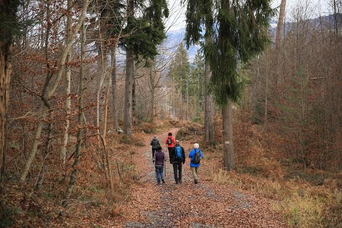 "Bergwanderung ins Gebiet des ""Russischen Bären"" - Image 19"