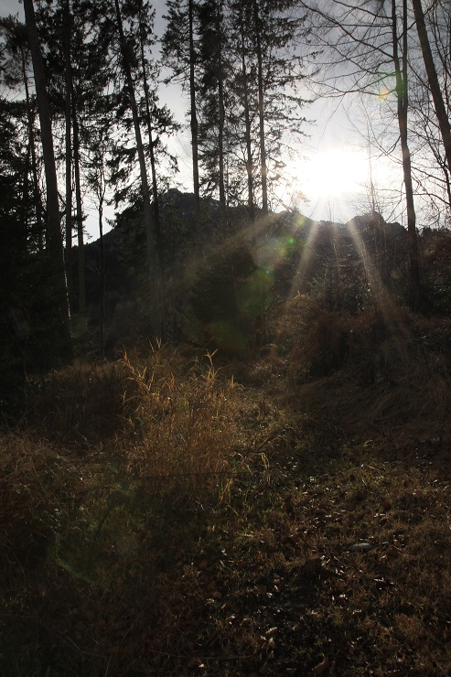 "Bergwanderung ins Gebiet des ""Russischen Bären"" - Image 20"