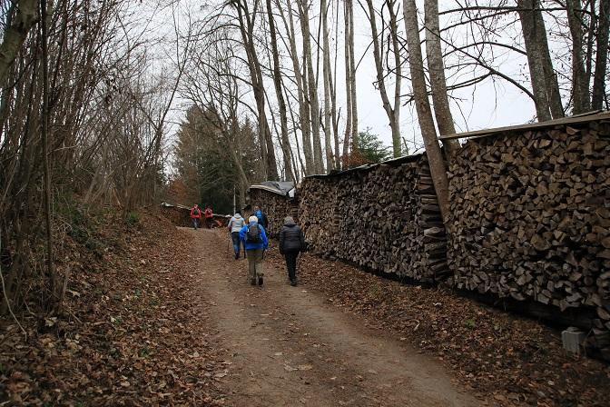 "Bergwanderung ins Gebiet des ""Russischen Bären"" - Image 7"