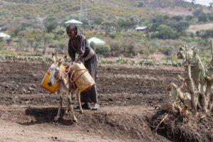Vortrag Hilfs-Projekt in Äthiopien