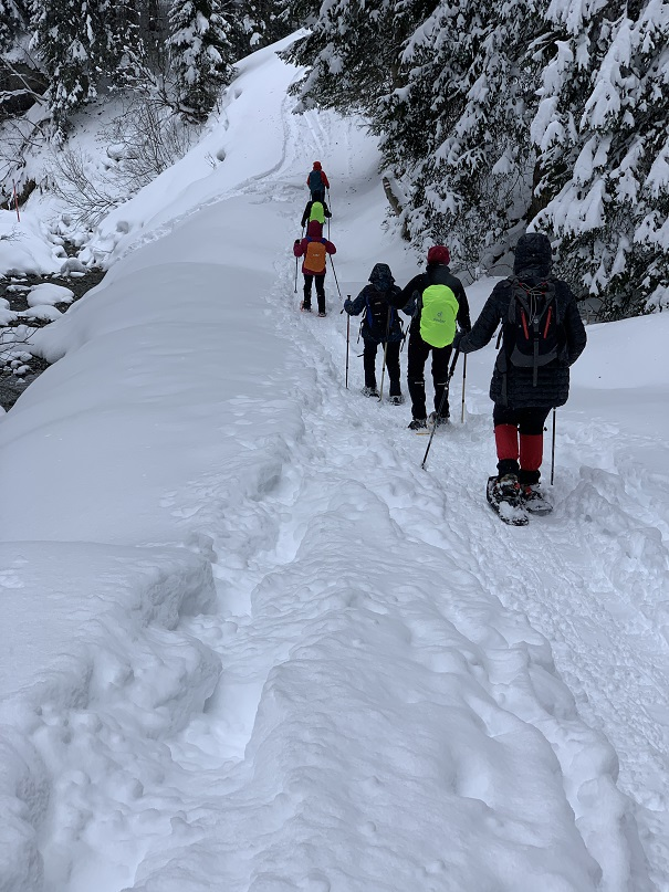Schneeschuhwanderung in Gargellen - Image 16