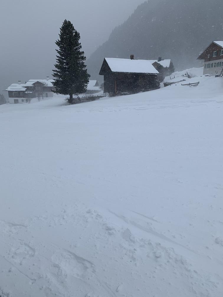 Schneeschuhwanderung in Gargellen - Image 23