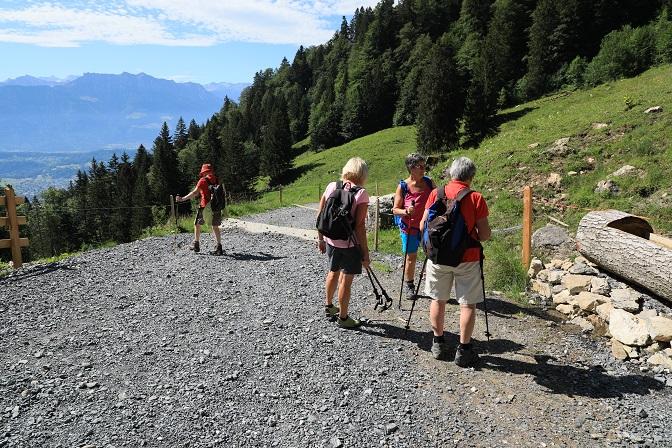 Britschli-Alp Rohr-Alp Eidenen - Image 17