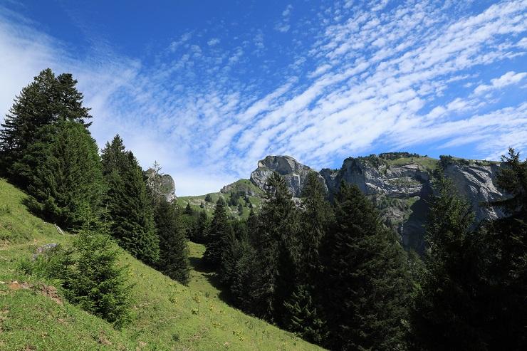 Britschli-Alp Rohr-Alp Eidenen - Image 19