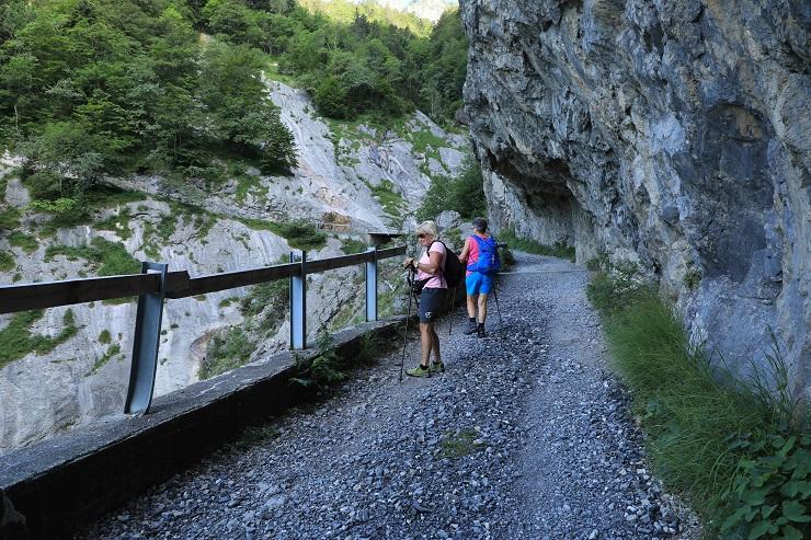Britschli-Alp Rohr-Alp Eidenen - Image 9