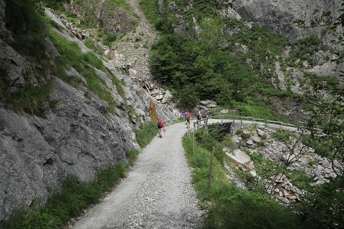 Britschli-Alp Rohr-Alp Eidenen - Image 29