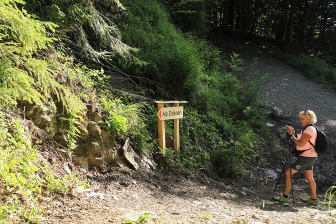 Britschli-Alp Rohr-Alp Eidenen - Image 12