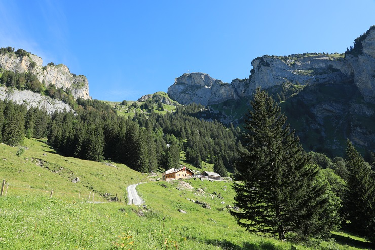 Britschli-Alp Rohr-Alp Eidenen - Image 13