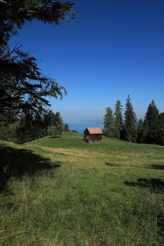 Gebhardsberg-Känzeleweg - Image 15