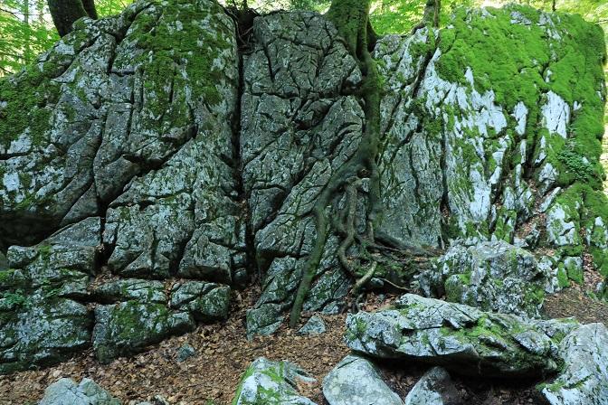 Gütle-Rappenloch-Alploch-Kirchle - Image 28