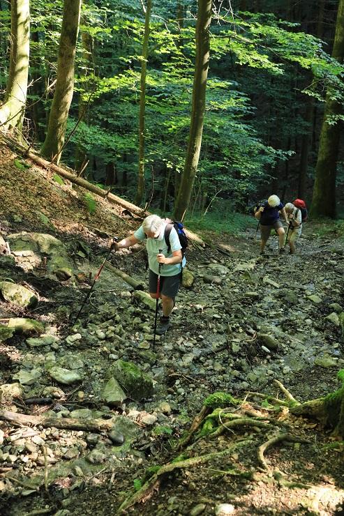 Gütle-Rappenloch-Alploch-Kirchle - Image 32
