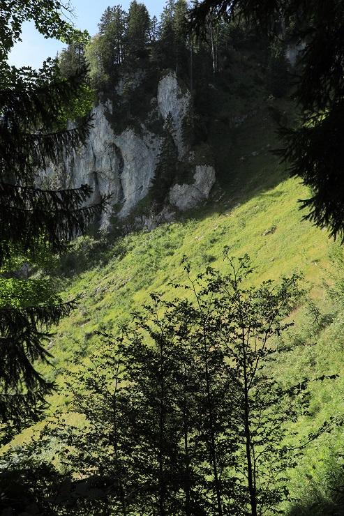 Schuttannen – Staufen - Image 36