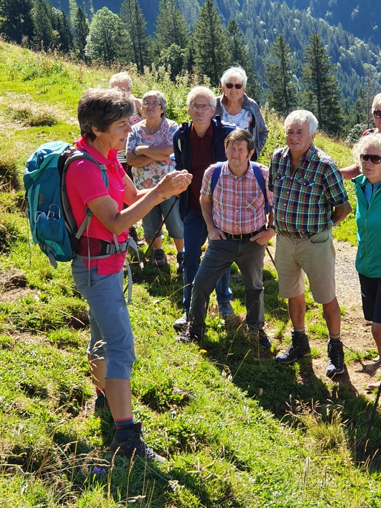 Tolle Wanderung zur Stongeralpe - Image 7