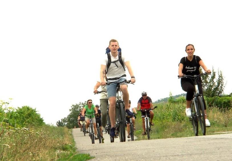 Radtouren rund um den Neusiedlersee und Eisenstadt - Slide 3