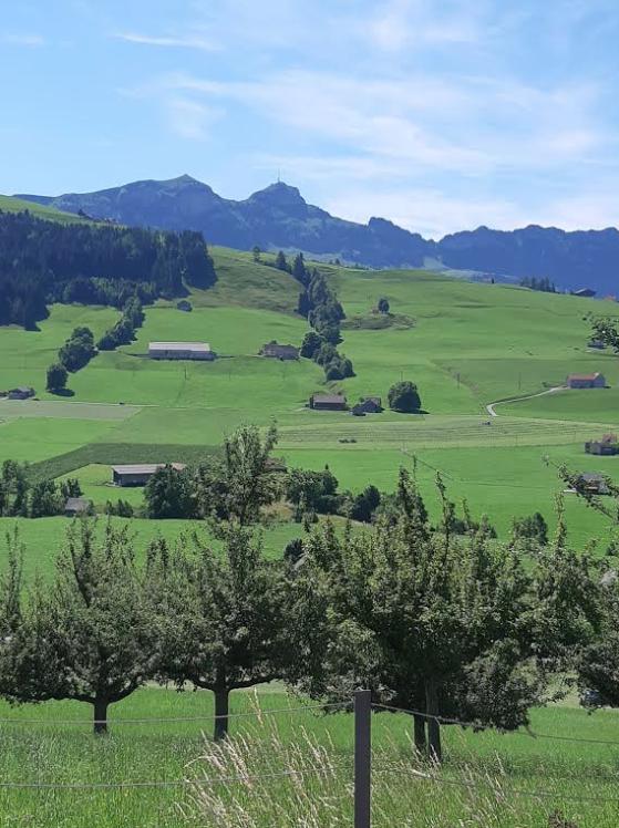 Seniorenbund  OG -Sulzberg  –  Bike-Tour ins Appenzell - Image 7