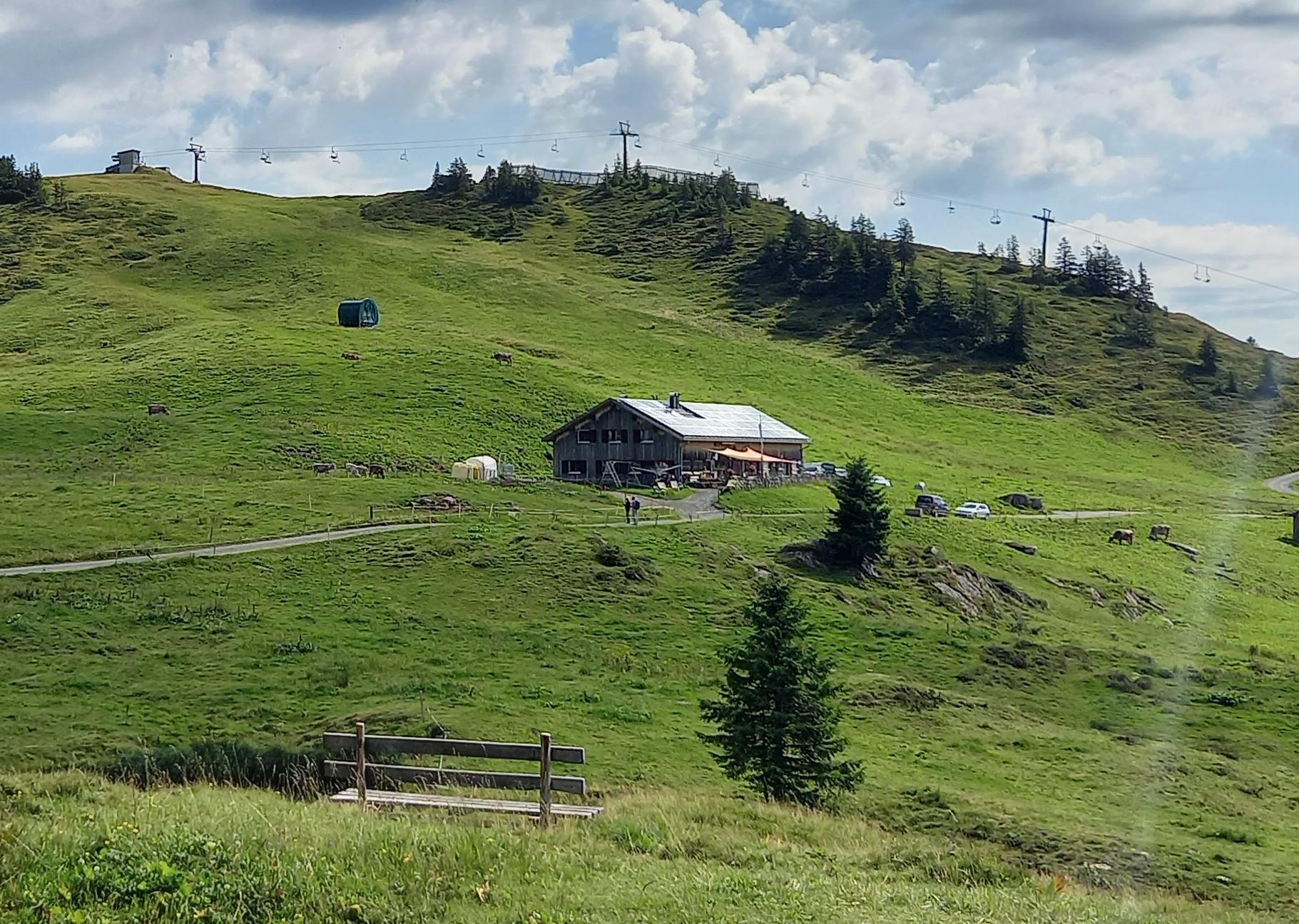 Tagesausflug auf die Alpe Oberdamüls am 11.8.2021 mit Adolf Fetz